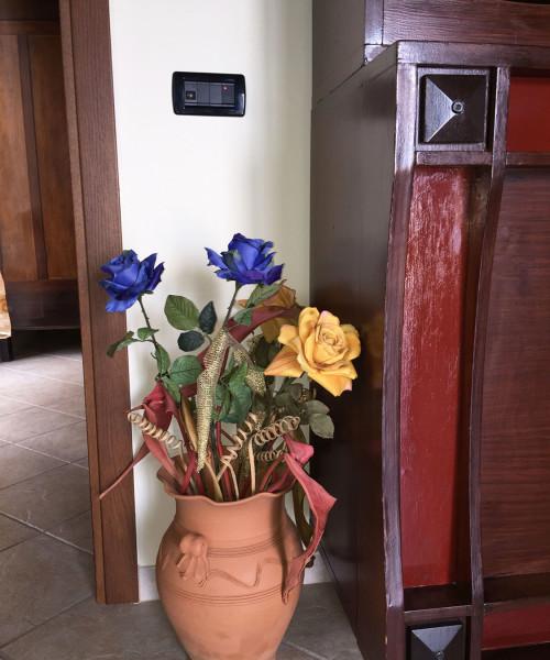 Dettaglio fiori